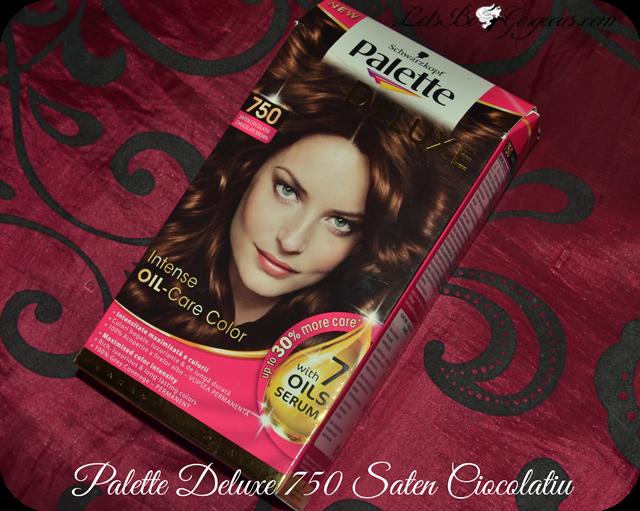 Vopsea Palette Deluxe șaten Ciocolatiu 750 Poze înainte și După